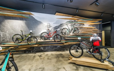 Mountain Bike Display